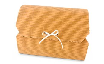 One-part cardboard gift box closed with ribbon