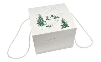 Kalėdinė dėžė dovanoms