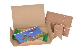 Cardboard gift envelopes