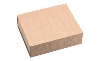 Magnetinė dėžutė