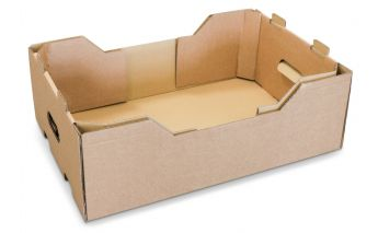 Cardboard box for fruits or vegetables with handles