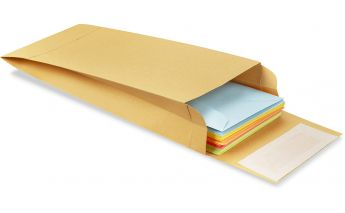 Kraft envelopes with extensions